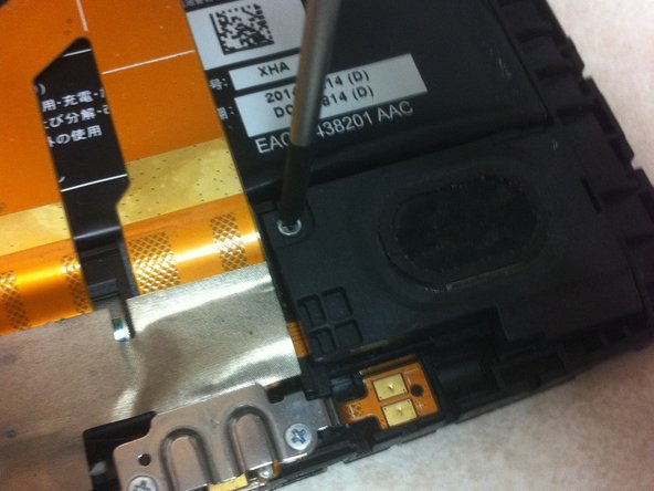 Using the Phillips screwdriver, remove the screw and put aside for reassembly.