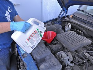 Oil Change (2WD, 4.7 L V8)
