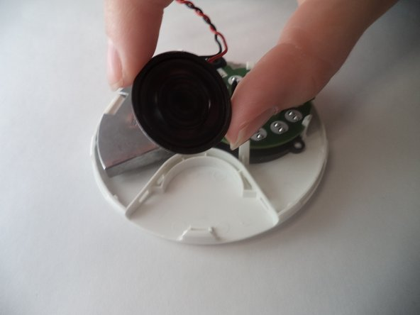 Pull out the speaker which is now loosely resting in its plastic housing.