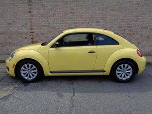 Riparazione Volkswagen New Beetle