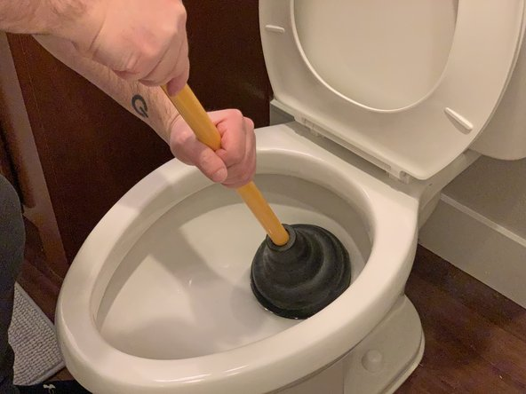After making the initial plunge, the plunger should now be completely sealed around the toilet bowl's drain.