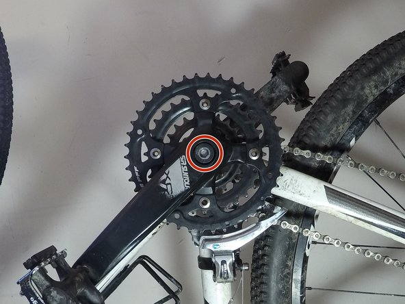 Remove the 8 mm Hex screw from the crank arm.
