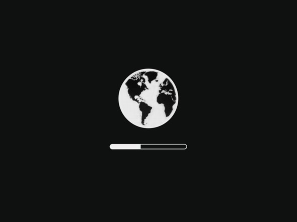 Once a network connection has been established, a progress bar will appear underneath the spinning globe.