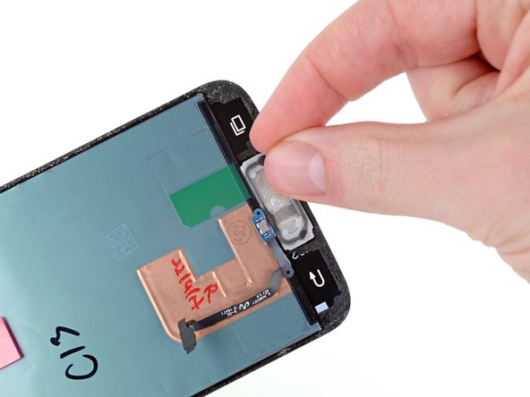 Grab the lifted portion of the home button assembly and gently pull it away from the display, tearing the rest of the adhesive.