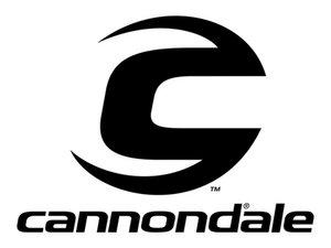 Cannondale Repair