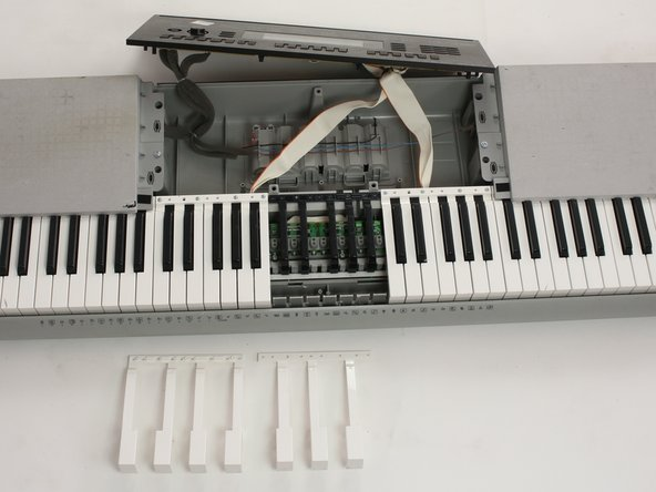 Casio WK-220 White Keys Replacement