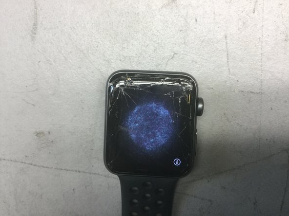 Install Series 2 Display on a Series 3 with Apple Pay