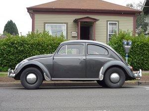Volkswagen Bug Repair