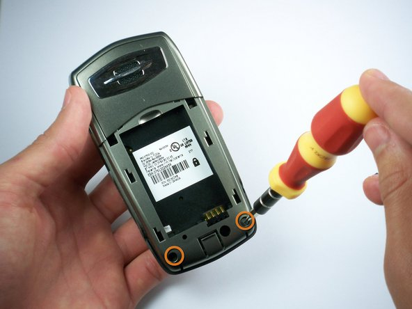 Using the T6 Torx screwdriver, remove the bottom two screws on the back of the phone.