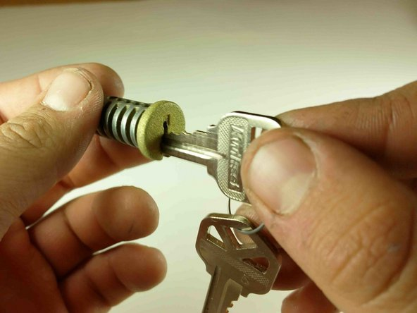 Place the new keys into the plug.