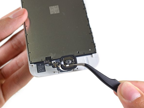 Removing the shield plate allows access to the home button.