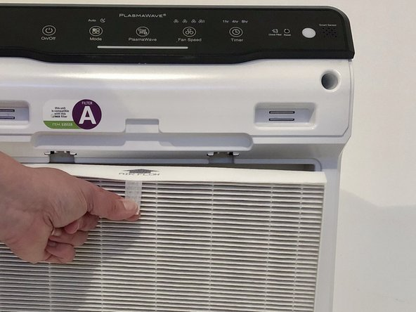 Remove the True HEPA Filter by pulling it away from the device.