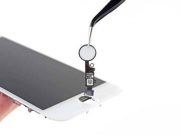 Remove the home/Touch ID sensor assembly by lifting it through the front side of the display.