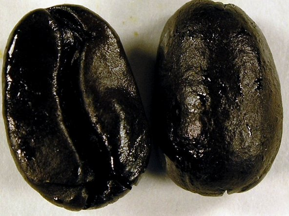 """Some beans, especially the """"roasted so dark it's nearly charcoal"""" variety can be way too oily. The characteristic is that rather than grind to a powder it turns to """"paste"""" in the lower chamber. This is obviously bad, because it then comes out in clumps or not at all."""