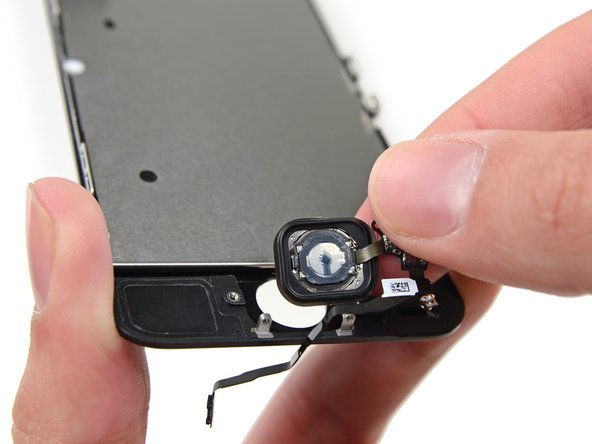 Remove the home button assembly from the front panel.