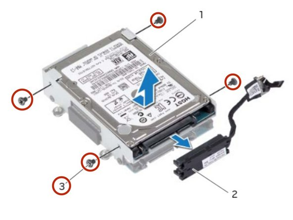 Replace the screws that secure the primary hard drive to the hard-drive bracket.