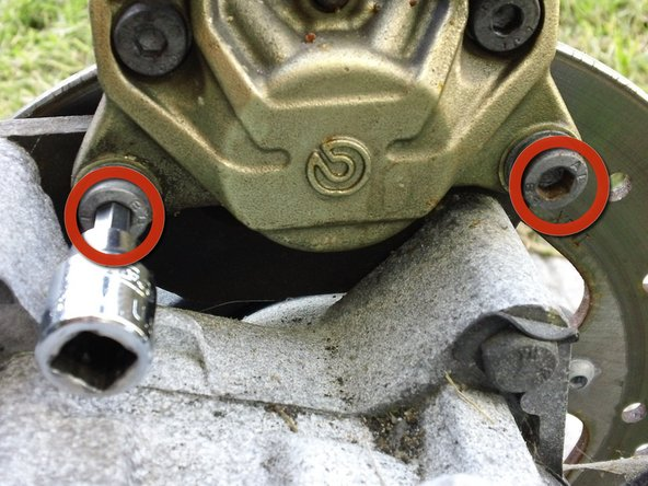 Loosen the two 6mm Allen bolts securing the rear caliper.