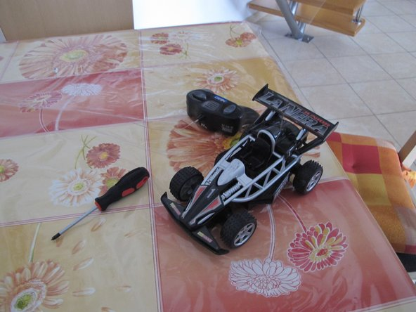 The Car, the Remote Control and a Phillips screwdriver.