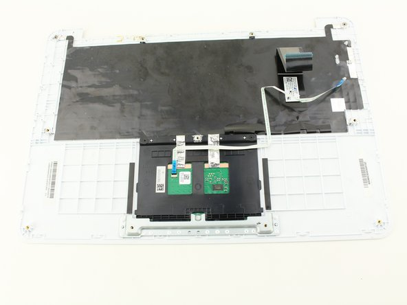 Asus Chromebook C300SA-DS02 Trackpad Replacement