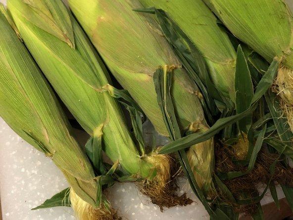 How to save fresh corn