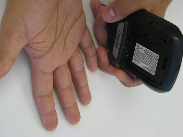 Hold the BlackBerry in one hand face-up with the screen facing towards you.