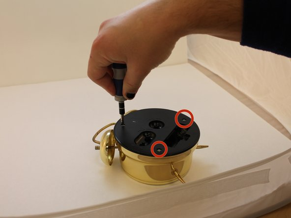 Using a Phillips screwdriver, remove the top screw.