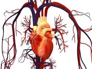 Cardiac Equipment Repair