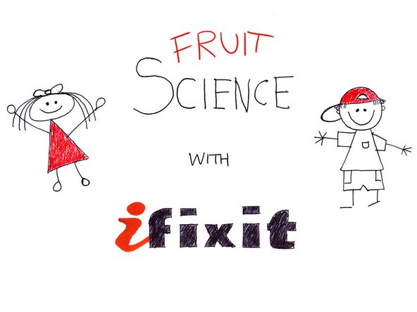 Now that we've removed the rind, let's take a brief scientific look at the make-up of the Orange in the first ever segment of Fruit Science with iFixit!